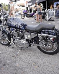 Leesburg-Bike-Fest-2015_BM-(82)