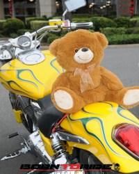 Great-Teddy-Bear-Run-11-15--(16)