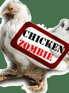 Zombie Chickens Terror in Pentagon Paper, CONOP 8888.