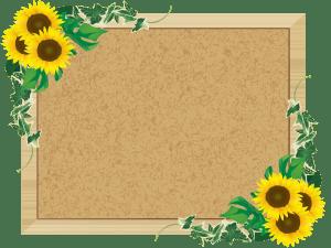 framesunflower,ひまわりのコルクボード