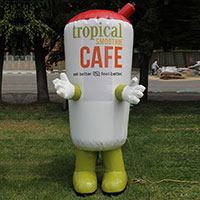 Tropical Smoothie Cafe Costume