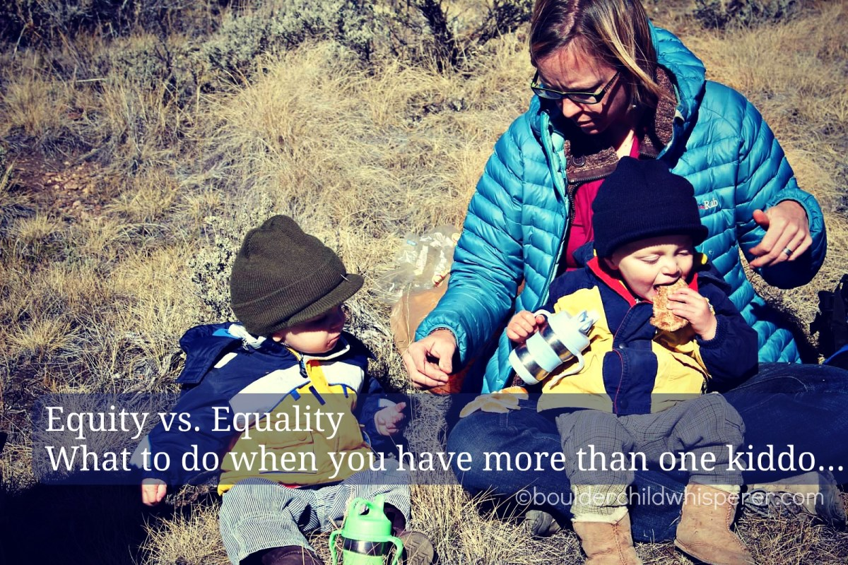 Equality vs. Equity (what to do with more than one kiddo...)