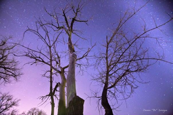Reaching To The Stars