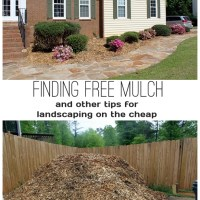 Landscaping On the Cheap (or Free)