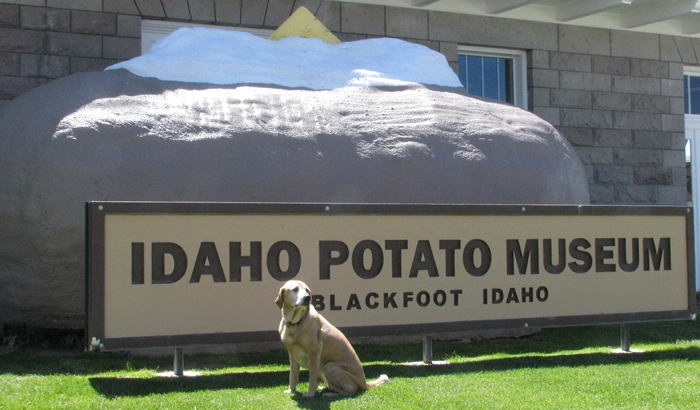 potato museum