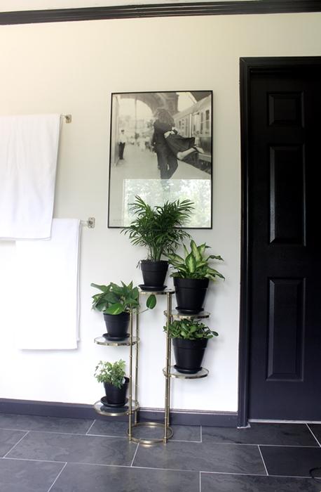 bathplants01s