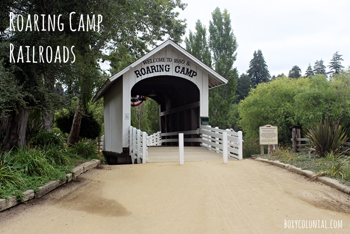 Roaring Camp Railroads