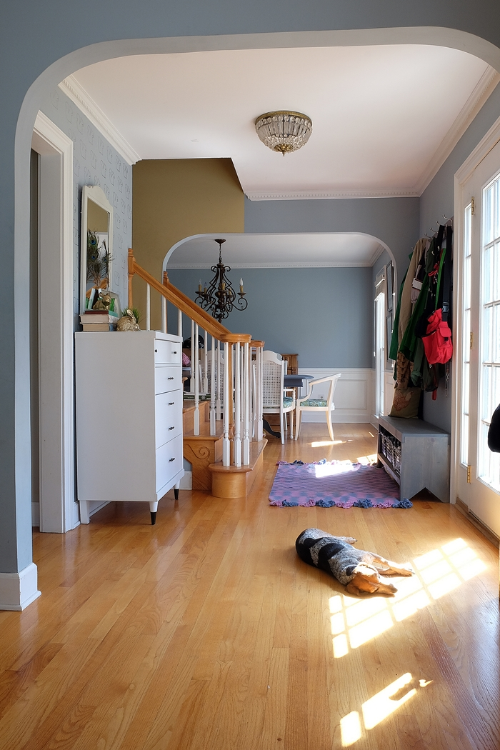 foyer with beagle