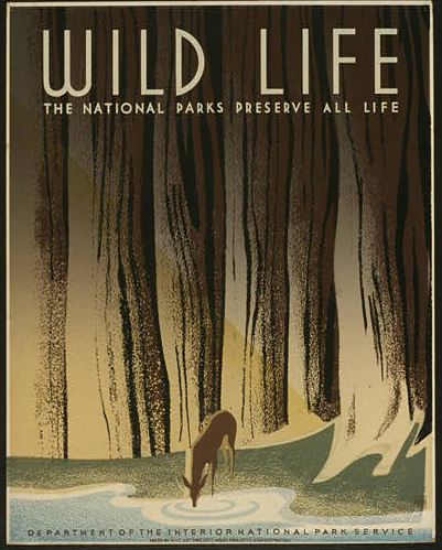 national parks wild life poster from freevintageposters.com