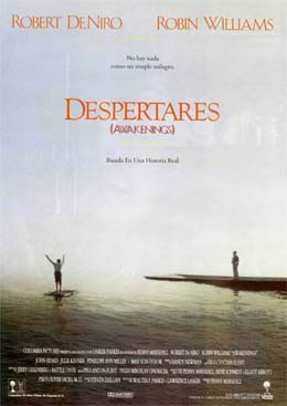 Poster do filme Tempo de Despertar