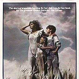 Poster do filme Um Lugar no Coração