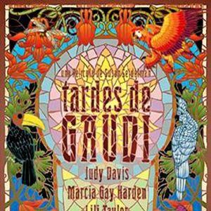 Poster do filme Procura-se um Amor em Barcelona