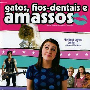 Poster do filme Gatos, Fios Dentais e Amassos