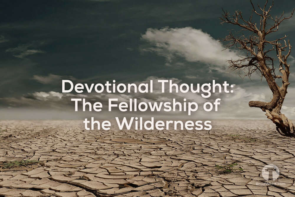 Devotional Thought – The Fellowship of the Wilderness