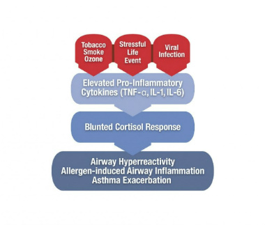 Risk factors for asthma in children
