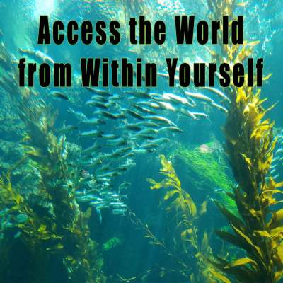 access the world within, divine human potential, DNA upgrades