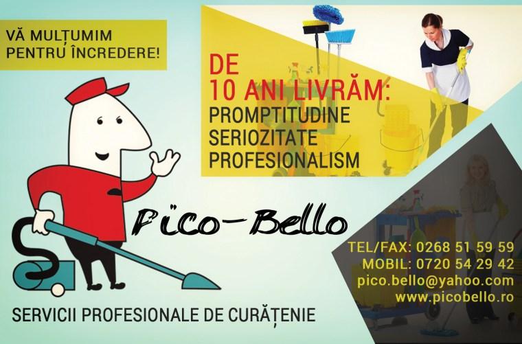 Pico-Bello-10-ani