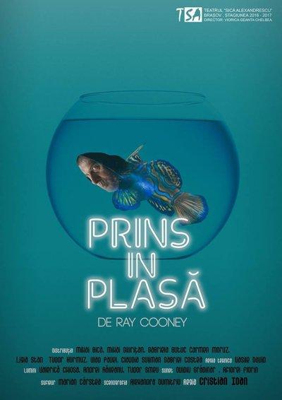 afis_prins_in_plasa