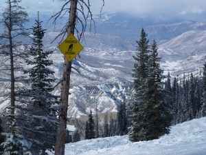 Why Our Family Loves to Ski at Snowmass, Colorado