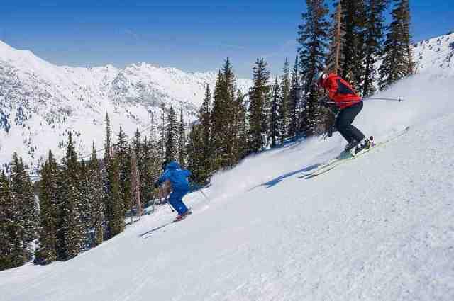 snowbird skiing
