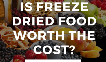 What is Freeze Dried Food?