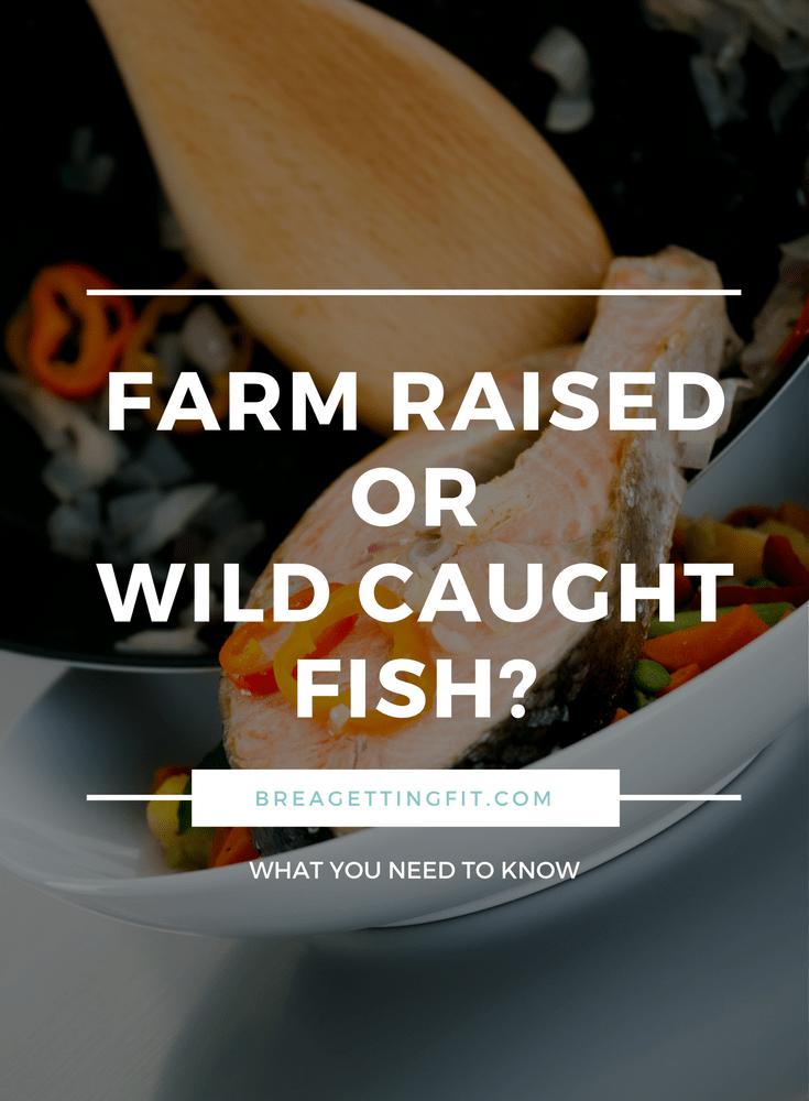 Farm Raised Fish vs Wild Caught