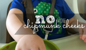 Put A {delicious} Stop To Chipmunk Cheek Stuffing