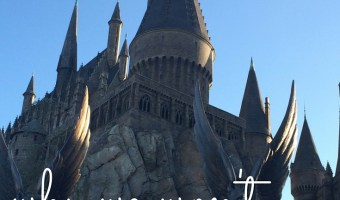 Why We Won't Be Returning to Universal Studios {+ Tips If You Go}