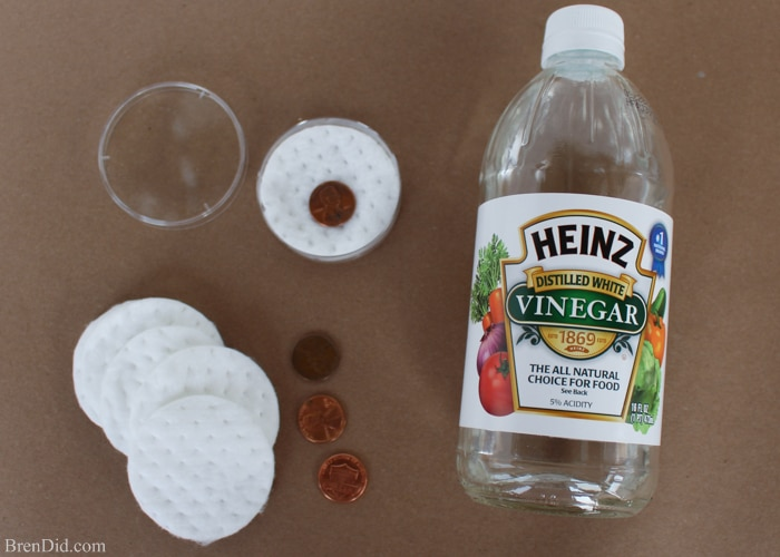Cool Science Experiments for Kids – Get your kids interested in STEM → science, technology, engineering, and math with these easy science projects using physics and chemistry. Create a glitter tornado, shine pennies then turn them green, and catch ice on a string using supplies you have around the house. Smart is the New Cool! #free printable #STEM #lesson plan