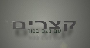 קצרים – חברות בהתבודדות – נועם בכור