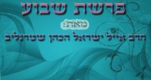 פרשת בחוקותי – השמחה מצילה חיים – הרב אייל ישראל שטרנליב