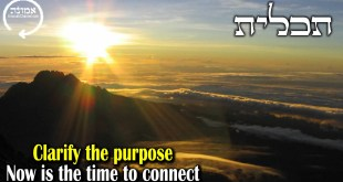 Clarify the purpose | Now is the time to connnect