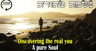 Discovering the real you  | A pure soul