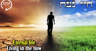 Eternal Life | Living in the Now