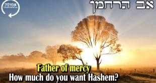 Father of mercy  | How much do you want Hashem?