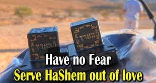 Have no fear | Serve Hashem out of love