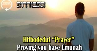 Hitbodedut / Prayer | Proving you have Emunah
