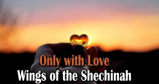 Only with Love | Wings of the Shechina