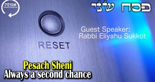Pesach Sheni | Always a second chance | Rabbi Eliyahu Sukkot