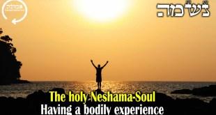 The holy Neshama-Soul  | Having a bodily experience