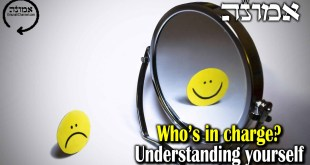 Who's in charge?  | Understand yourself