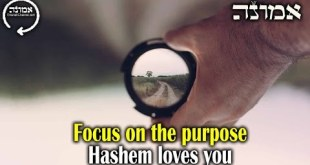 Focused on the Purpose | Hashem love you