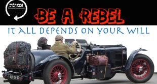 Be a rebel | It all depends on your will