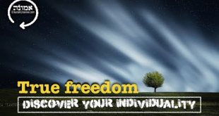 True freedom | Discover your individuality
