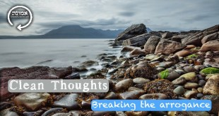 Clean thoughts | Breaking the arrogance