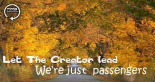 Let The Creator lead | We're just passengers