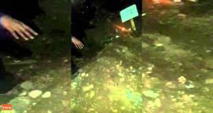 """קטע מצמרר: מאות נשים בוכות על קברו הטרי של מוהרא""""ש"""