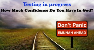 Testing in progress   How Much Confidence Do You Have In God?