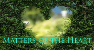 Matters of the Heart | A Sanctuary For The Creator