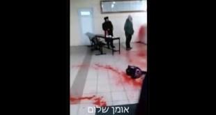 """זעזוע: אנטישמים זרקו דם וחזיר בציון רבי נחמן מברסלב זי""""ע באומן"""